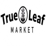 True Leaf Market – Replenish your soil this Winter! Shop Cover Crop Seeds Now!